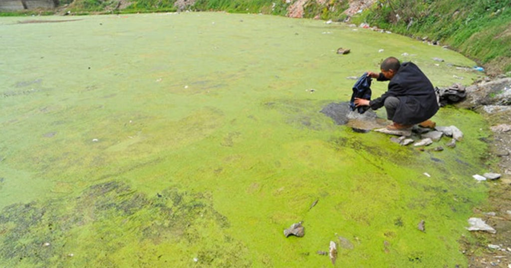 A polluted lake in China
